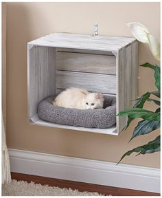 Animal Room, Animal Decor, Animal House, Cat Crate, Crate Bed, Crate Nightstand, Crate Table, Cat House Diy, Cat Shelves