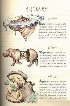 Codex Seraphinianus: rarezas de la literatura