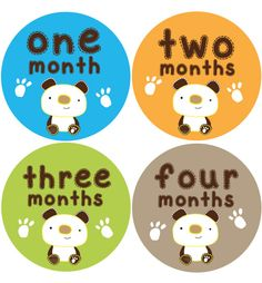 Bear Baby Month Stickers