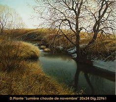 Lumiere chaude du Novembre River, Outdoor, November, Outdoors, Outdoor Games, Outdoor Living, Rivers