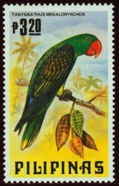 Resultado de imagem para Philippines Stamp - Bird Parrots