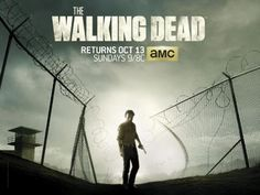 http://comics-x-aminer.com/2013/09/05/new-promo-image-for-the-walking-dead-season-4/