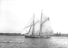 Grand Bank fishing schooner Esperanto in Halifax Harbour W.R. MacAskill, 1920 Nova Scotia Archives accession no. 1987-453 no. 326