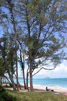 #7 Waimanalo Bay Beach Park, Oahu, Hawaii
