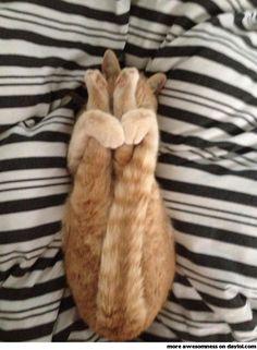 Posture de yoga très relaxante .
