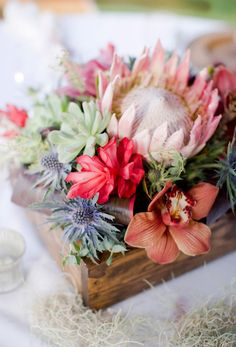 Beach Wedding Centerpieces - Exotic Blooms Centerpiece : King protea, sea holly, succulents, red cone ginger, and cymbidium orchids nestled in stained pine boxes are a rustic approach to a summery centerpiece. Protea Centerpiece, Flower Box Centerpiece, Tropical Centerpieces, Table Flowers, Exotic Flowers, Beautiful Flowers, Fresh Flowers, Pastel Flowers, Tropical Flowers