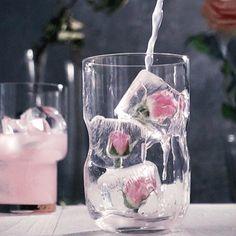 Publicação do Instagram de @_hefchangedmylife_ • 26 de Fev, 2019 às 3:15 UTC Fancy Drinks, Cocktail Drinks, Yummy Drinks, Cocktail Recipes, Spring Cocktails, Processco Cocktails, Champaign Cocktails, Lychee Cocktail, Rose Cocktail