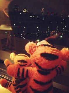 Twitter / BAP_Bangyongguk: SAVE TIGER SUMATRA SHOUT OUT #TigerRoar FROM OSAKA #Greenpeace #ProtectParadise