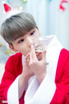 Merry Christmas from Dino Jeonghan, The8, Vernon, Dino Seventeen, Seventeen Debut, Seventeen Memes, Hoshi Seventeen, Michael Jackson, Seventeen Performance Unit