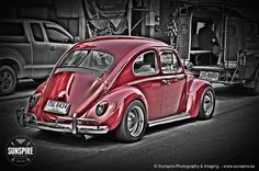 A red bug in a black and white world...