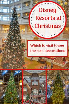 Disney resorts at Christmas
