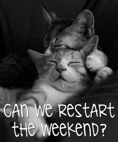 Can we restart the weekend?