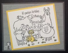 STAMPIN' UP! OCCASIONS CATALOG FROM THE HERD!