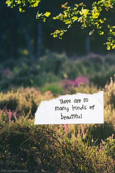 So true...often there is even beauty in what the eye first perceives to be unattractive.  One must simply take the time to look below the surface, view from all angles...Claire