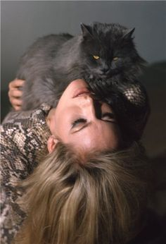 Portrait of Ursula Andress by Larry Shaw, I am not the author of this image. Check out Ursula Andress by David Hurn right here Crazy Cat Lady, Crazy Cats, Image Hilarante, Close Image, Celebrities With Cats, Celebs, Jeanne Moreau, Ursula Andress, Cat People