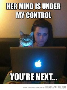 Assuming direct control…