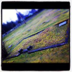 Lyman Cemetery 1800's Family Plot