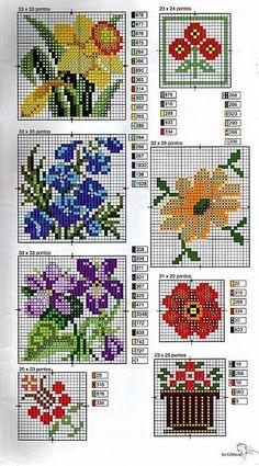 fiori narcisi violette