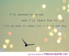 37 Ideas free as a bird quotes thoughts Bird Quotes, Lyric Quotes, Cute Quotes, Happy Quotes, Fly Quotes, Bird Sayings, Feather Quotes, Happy Sayings, Awesome Quotes
