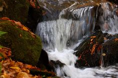 Autumn Waterfall in Taymouth, N.B.