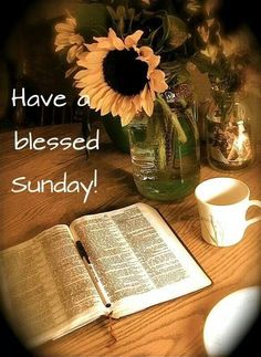 To all my family and friends everywhere my faith цитаты, подсолнухи, бог. Blessed Sunday Quotes, Sunday Wishes, Sunday Greetings, Have A Blessed Sunday, Sunday Messages, Sunday Prayer, Saturday Quotes, Robert Kiyosaki, Encouragement
