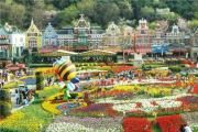 Seoul Land Amusement Park Spring Festival