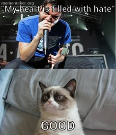 A Day to Remember Grumpy Cat, hahah! I think grumpy cat might actually like adtr