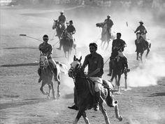 Polo player, Chitral, Pakistan Hindu Kush, Polo Match, Pakistan, My Photos