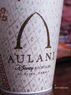12 Things You Must Do at Disney's Aulani Resort in Hawaii