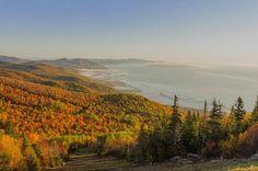 Fall colors at ..  Le Massif de Charlevoix, Quebec City, Canada