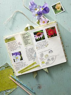 Dreaming of spring? Make this the year you finally get the garden of your dreams: http://www.bhg.com/gardening/design/projects/set-your-garden-goals/?socsrc=bhgpin020315setyourgardengoals