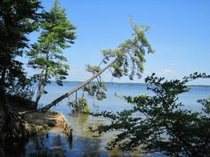 Ludington State Park, Ludington Picture: Lost Lake Trail, Ludington State Park - Check out TripAdvisor members' 1,773 candid photos and videos of Ludington State Park