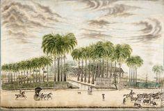 Plantagewoning op plantage Castor aan de Commewijne