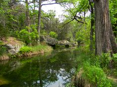 Hamilton Pool Preserve in Dripping Springs, Texas