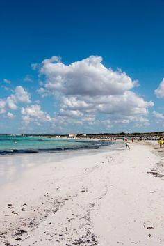 Es Es Trenc ist zu Recht der tollste Strand auf Mallorca! Mitten im Naturschutzgebiet, weißer Sand und klares Wasser - traumhafte Bilder!