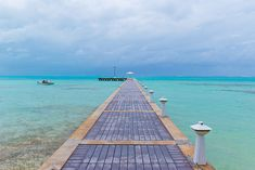 The 30 Best Marathons in the Entire World - Life by DailyBurn - Cayman Islands Marathon
