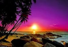 Image result for beach sunset
