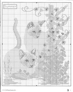 cats 6/7
