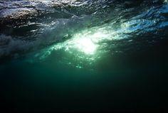 Mikihiko Kyobashi  underwater photography mikihiko.com/  Hawaii