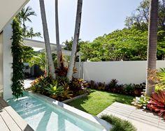 Tropical landscape and pool Tropical Pool Landscaping, Tropical Backyard, Landscaping With Rocks, Backyard Landscaping, Tropical Plants, Landscaping Ideas, Tropical Decor, Palm Garden, Garden Pool