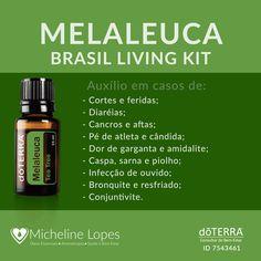 Um dos óleos essenciais que fazem parte do Kit Living Brasil (Frascos de 5ml) #doterra Melaleuca, Doterra Essential Oils, Beauty Routines, Reiki, Medicine, About Me Blog, Soap, Personal Care, Health