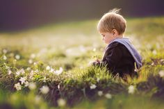 wildflowers | Flickr - Photo Sharing!