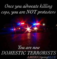 I have nothing against peaceful protest, but killing people is not a protest. Protesters that cause destruction to property and hurt/kill people are Domestic Terrorists. They are nothing but thugs looking for a reason to spread their violence. Police Quotes, Police Wife Life, Police Family, Police Lives Matter, Peaceful Protest, H & M Home, Thin Blue Lines, God Bless America, Law Enforcement