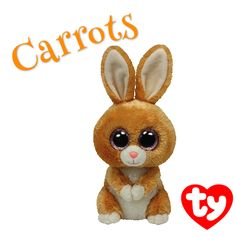 Carrots the Brown Bunny hopes you'll have a hoppy day today!