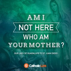Catholic-Link's Library - Am I not here who am your mother? Our Lady of...