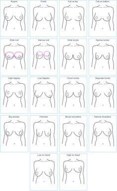 Beispiele für, wie Brüste in verschiedenen Formen von invest in Ihrer Brust kommen