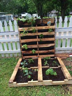 idée de bricolage jardiniere palette exterieur, jardin, planches de bois, idée comment faire un potager dans la jardin