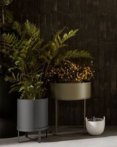 The Ferm Living Bau Plant Pots are perfect for both indoor and outdoor plants, available online and ready to ship 💫 . #greenliving… Large Plant Pots, Plant Box, Large Plants, Green Plants, Potted Plants, Bauhaus, Modern Garden Furniture, Decorative Room Dividers, Different Plants