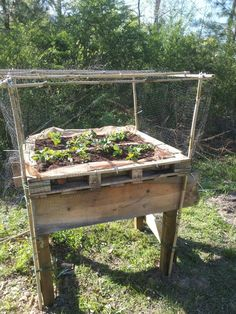 Raised Strawberry Bed From Recycled Bits