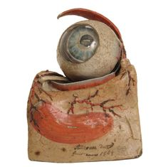 DR. AUZOUX EYE MODEL 1849